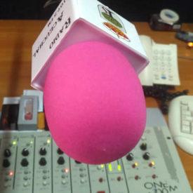 Radio Aceuchal