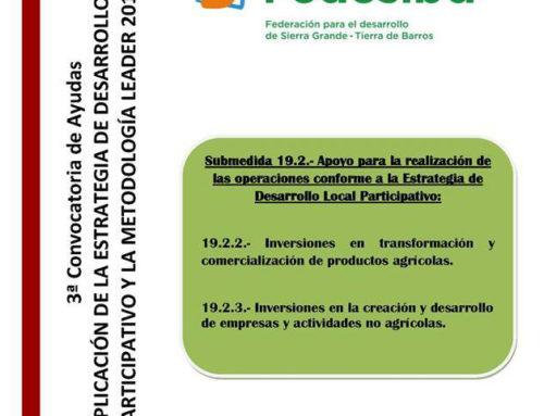 III Convocatoria de ayudas de FEDESIBA para el año 2019